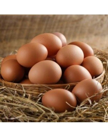 Desi Eggs 12pcs