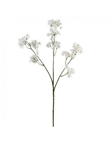 Baby's-breath ( Long Stem )