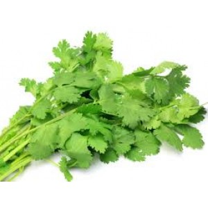 Coriander Leaves Bunch - دھنیا