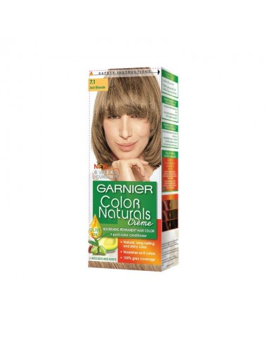 Garnier Ash Blonde 7.1 Color