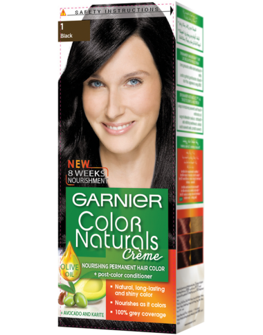 Garnier Hair Color Creme Black 1