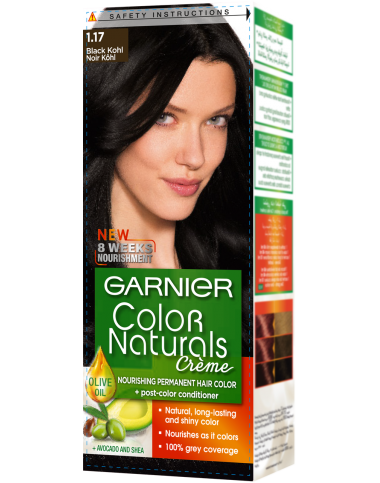 Garnier Black Kohl 1.17 Color