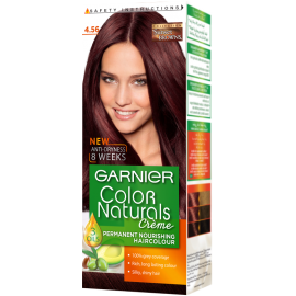 Garnier Blue Berry Black 4.56 Color