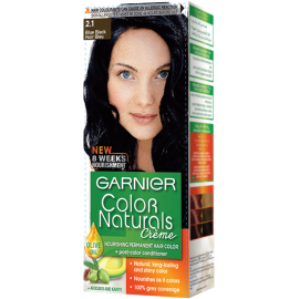 Garnier Blue Black 2.1 Color