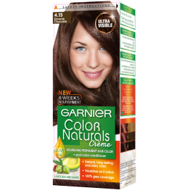 Garnier Brownie Chocolate 4.15 Color