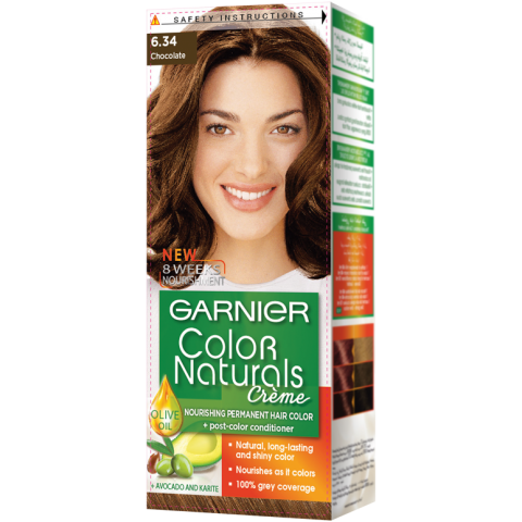 Garnier Chocolate 6.34 Color