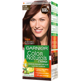 Garnier Cinnamon Chocolate 5.25 Color