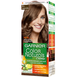 Garnier Creamy Coffee 5 1/2 Color