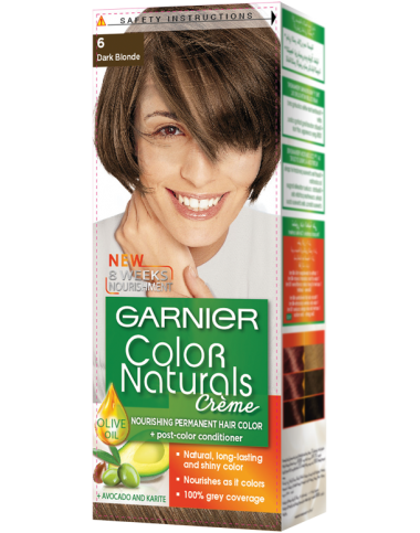 Garnier Dark Blonde 6 Color