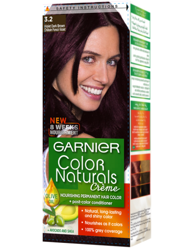 Garnier Hair Color Creme Dark Violet Brown 3.20