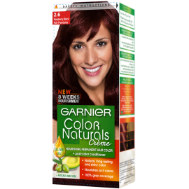 Garnier Raspberry Black 2.6 Color