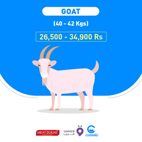 Goat 17+ kg (بکرا) Meat Dukan
